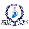 Mezinárodní pražská univerzita